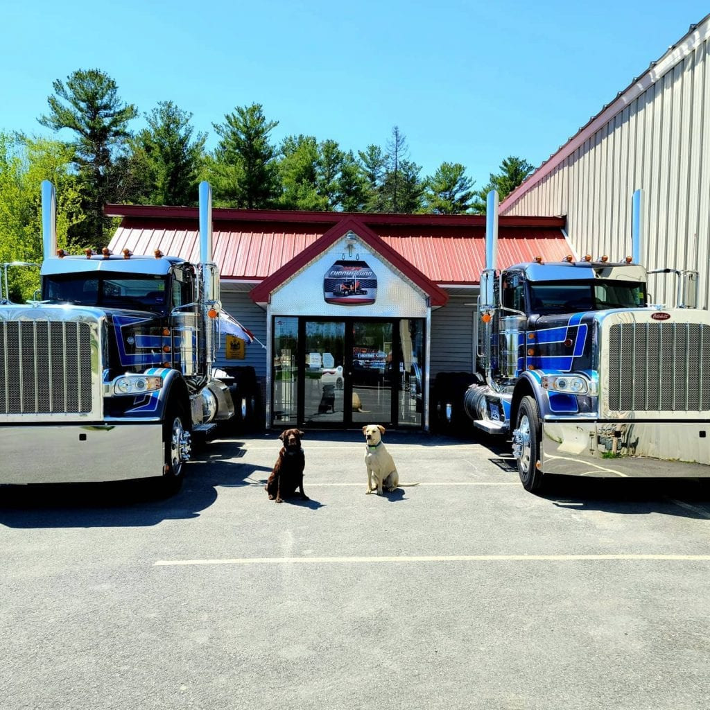 photo of two dogs and two big rig trucks in front of store front